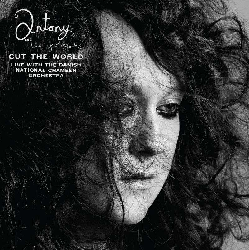 antony cut the world