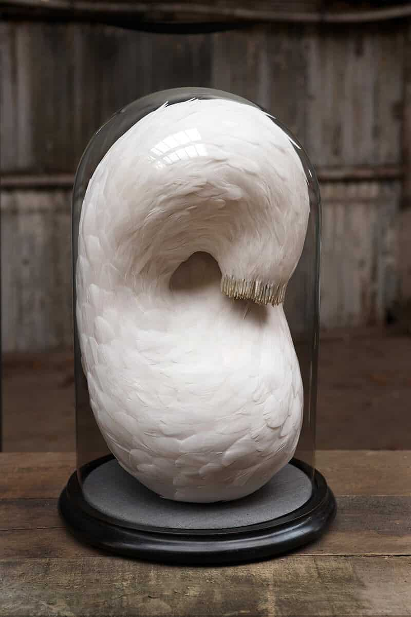 Sculpturen van veren door Kate MccGwire