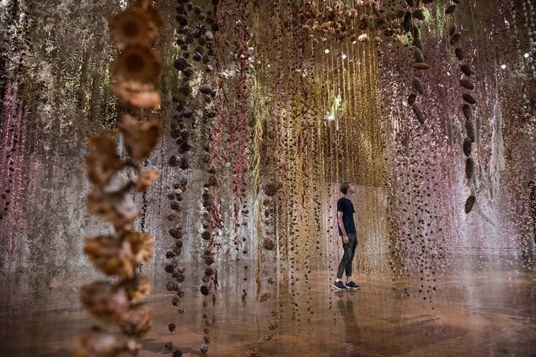 Community van Rebecca Louise Law