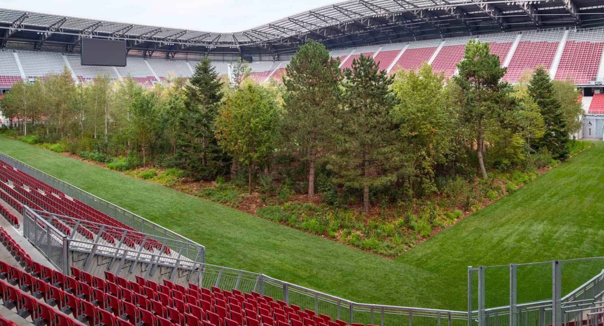 for forest bos in voetbalstadion mixed grill kunst 8