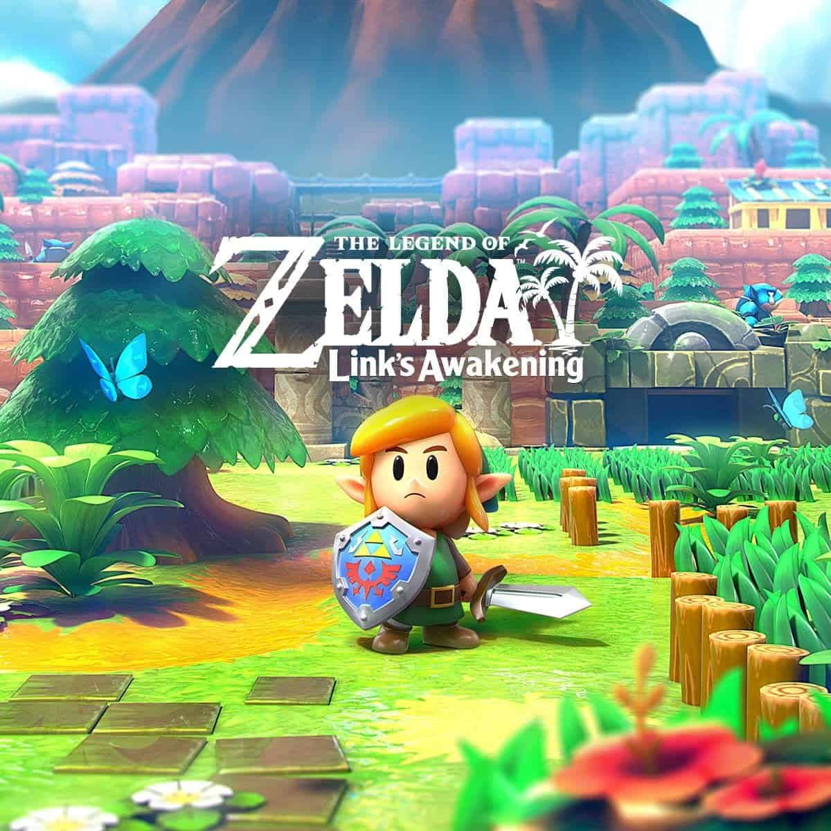 The Legend of Zelda Link's Awakening Review - Mixed Grill - Mixed Grill