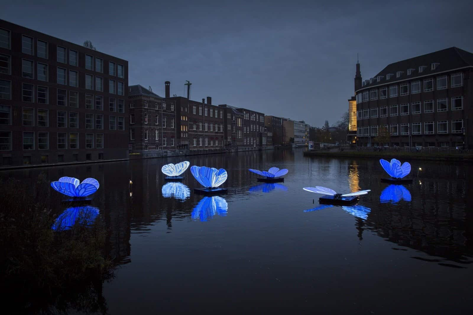 Butterfly Effect - By Masamichi Shimada - Amsterdam Light Festival 2019 - Photo Copyright Janus van den Eijnden (1)