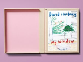 David Hockney - My Window