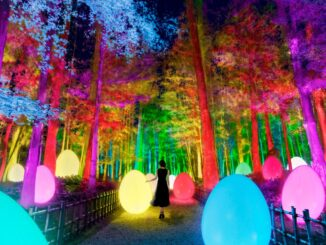 teamLab: Digitized Kairakuen Garden