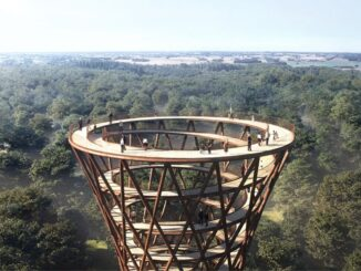 treetop experience